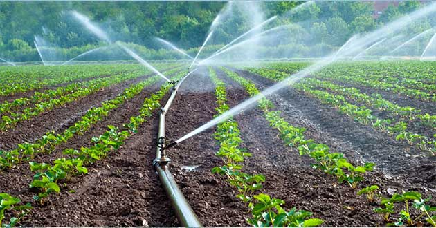 water-agriculture-irrigation