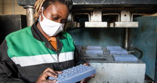 Ms Nzambi Matee is a materials engineer and head of Gjenge Makers, which produces sustainable low-cost construction materials made of recycled plastic waste and sand.