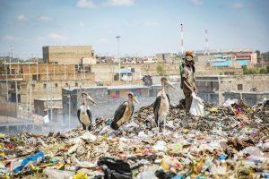 Men searching for valuables at Dandora dumpsite.